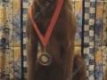 Kodi Medal