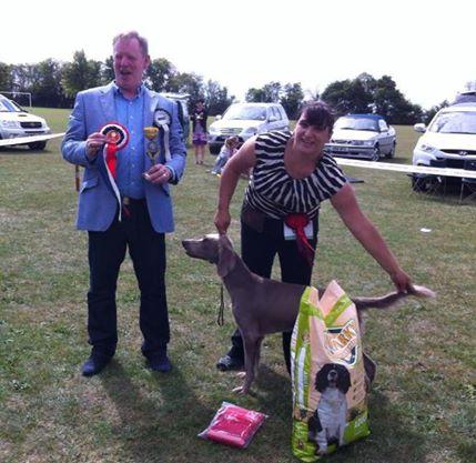 RHEA BIS! – Fox Terrier Rescue Companion Dog Show (Essex)