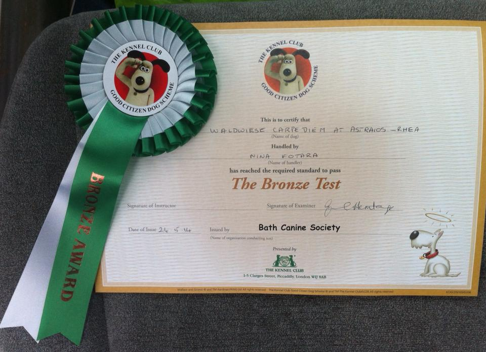 Good Citizens Bronze Award – Rhea