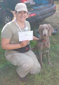 Kennel Club Working Test – The Italian Spinone Club of Great Britain