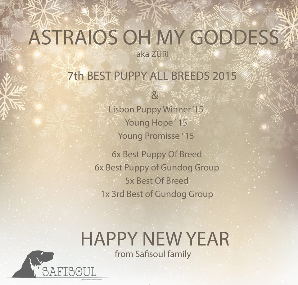 Astraios Oh My Goddess – Portugals 7th Top Puppy ALL BREEDS 2015