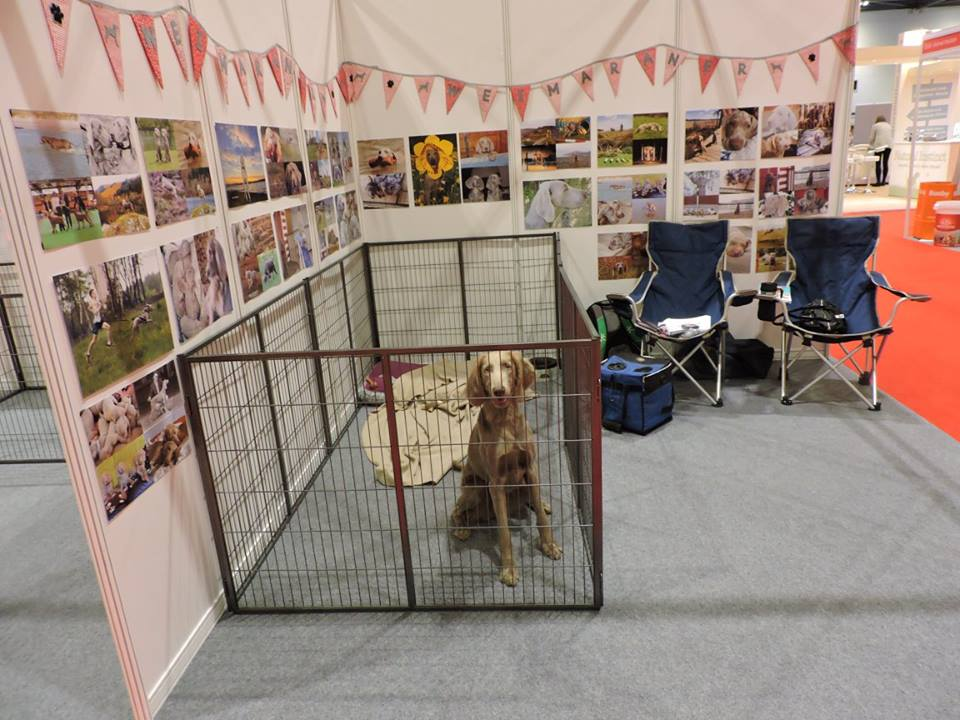 National Pet Show at Excel, London