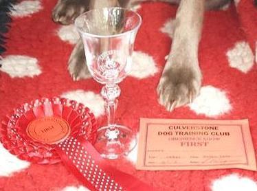 Culverstone Open Obedience Show – Sat