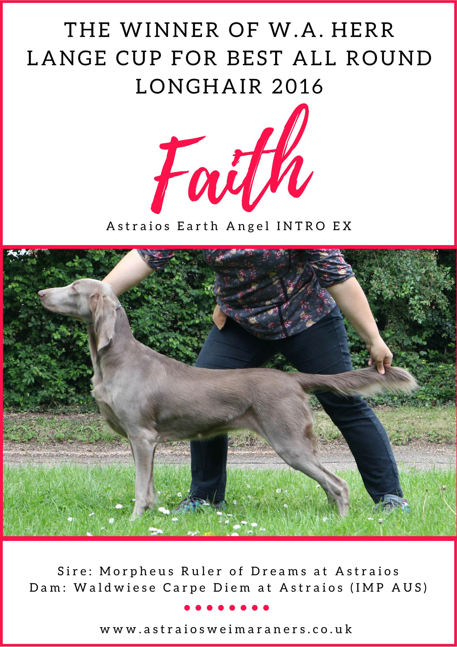 Herr Lange Cup 2016 – Faith (Astraios Earth Angel INTRO EX)