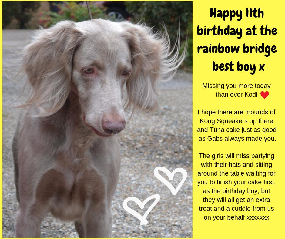 Happy birthday at the Bridge