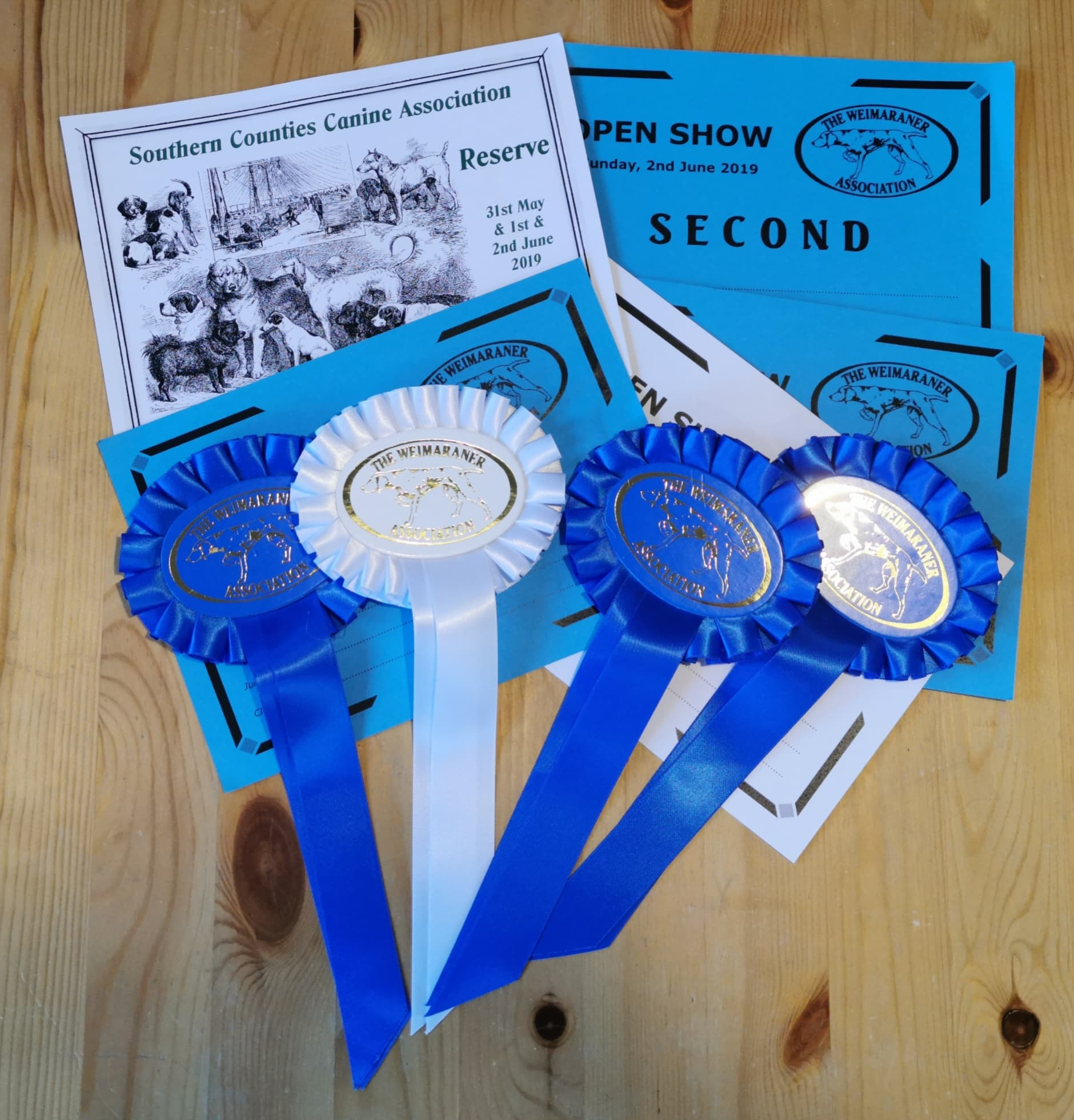 Southern Counties Championship Show & Weimaraner Association Open Show 2019