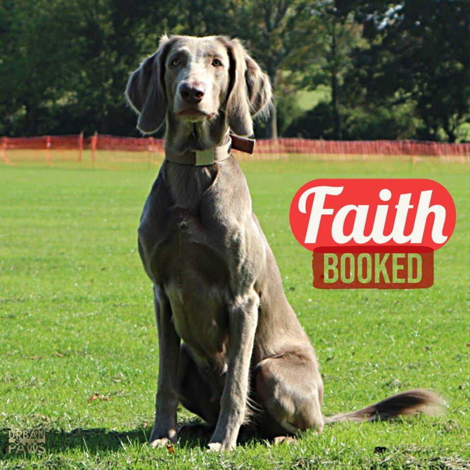 Faiths Commercial Shoot