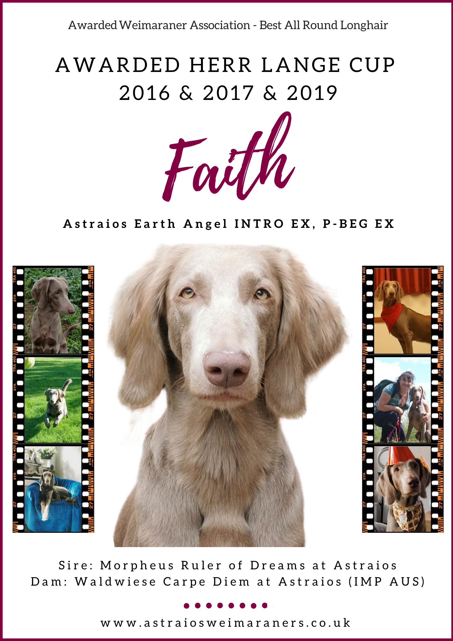 Herr Lange Cup 2019 – Faith (Astraios Earth Angel P-BEG EX)